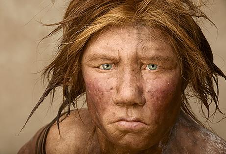 neanderthalge
